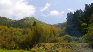 マイ農園の上半分の畑(まだ未整備)と裏の山