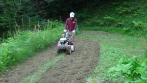 耕運機で耕しているところ