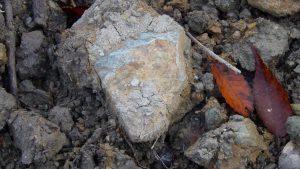 元田んぼには結構大きい石も沢山ある