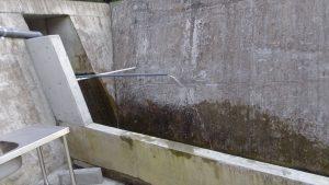 野菜や農機具を洗う。常時水は流れている
