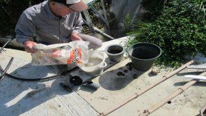 モルタルをバケツに入れ水を加える