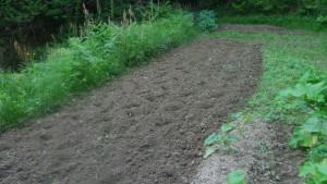 一度耕運機で耕し、100%有機肥料を撒き再度耕す